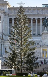 Rome's mangy Christmas tree to be carved up into souvenirs