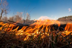 Missouri Department of Conservation offers prescribed fire workshops in NE Missouri