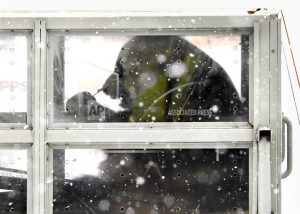 Pair of giant pandas get snowy welcome in Finland