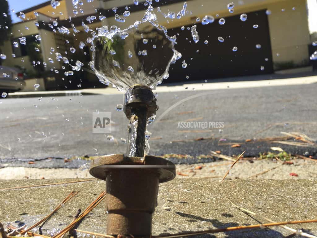 California weighs permanent restrictions for water wasters