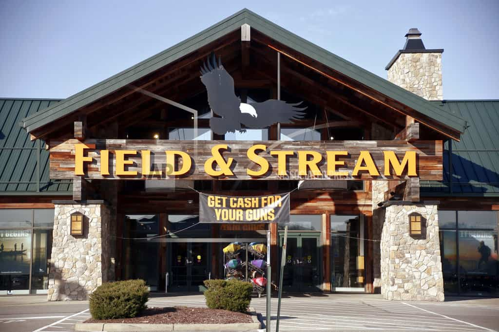 Retailers Dick's and Walmart take harder line against guns