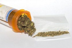 Illicit cannabis use and use disorders increase in states with medical marijuana laws