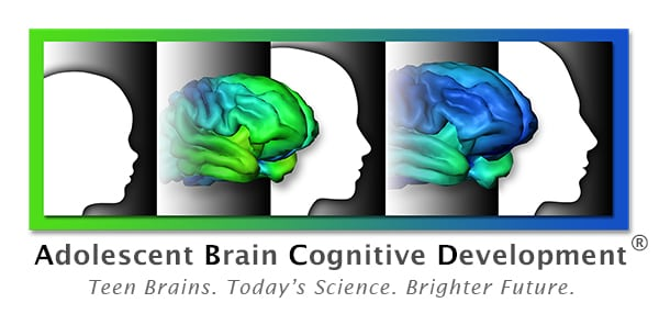Special journal issue highlights ABCD brain study