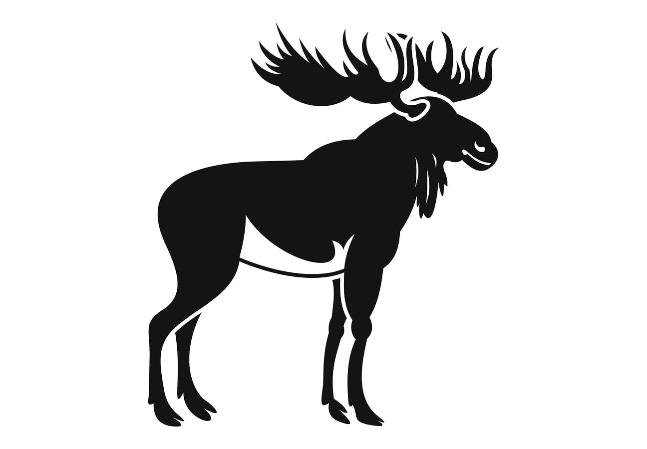 NEW HAMPSHIRE | 2018 Moose Permit Auction Now Open