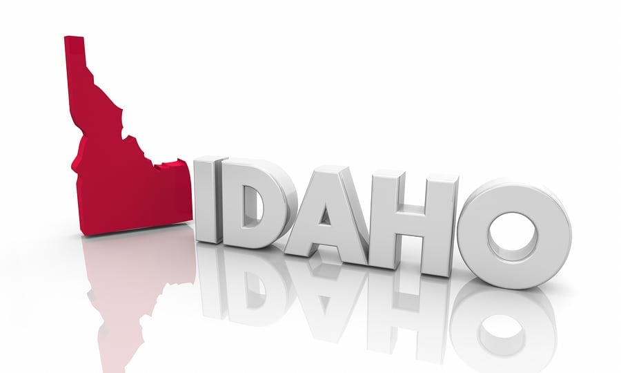 IDAHO | Public comments sought on proposed sage grouse, red squirrel hunting seasons