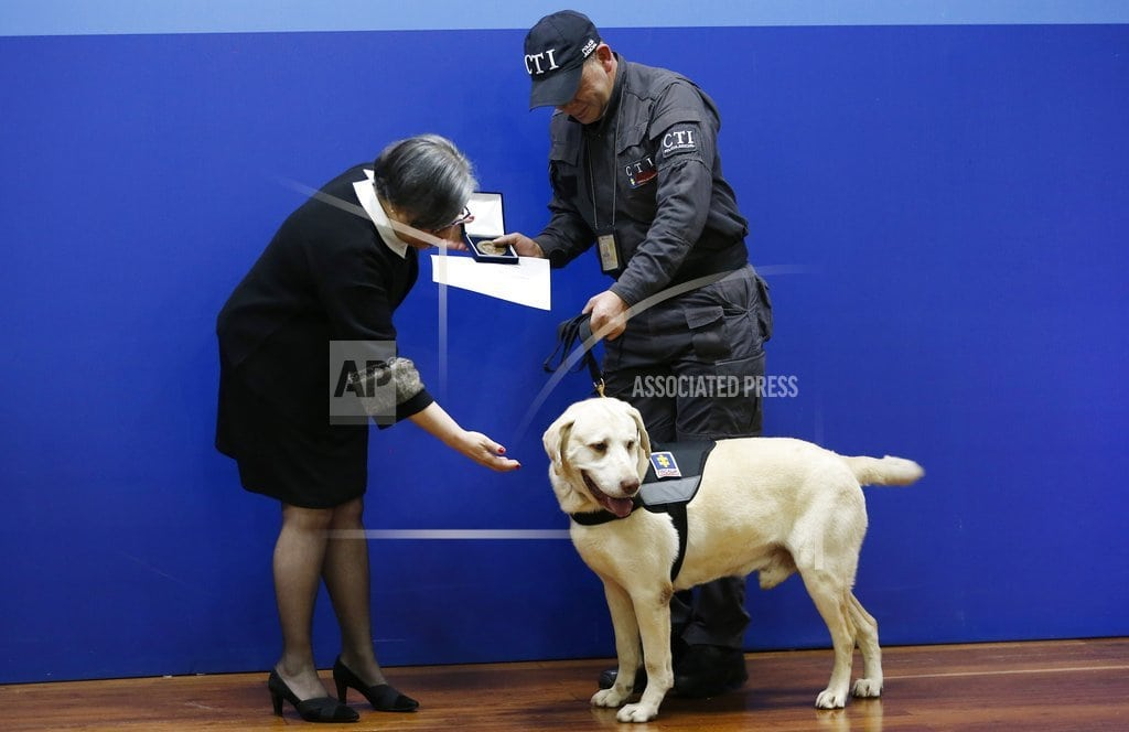 BOGOTA, Colombia | Colombia honors 14 sniffer dogs at emotional retirement