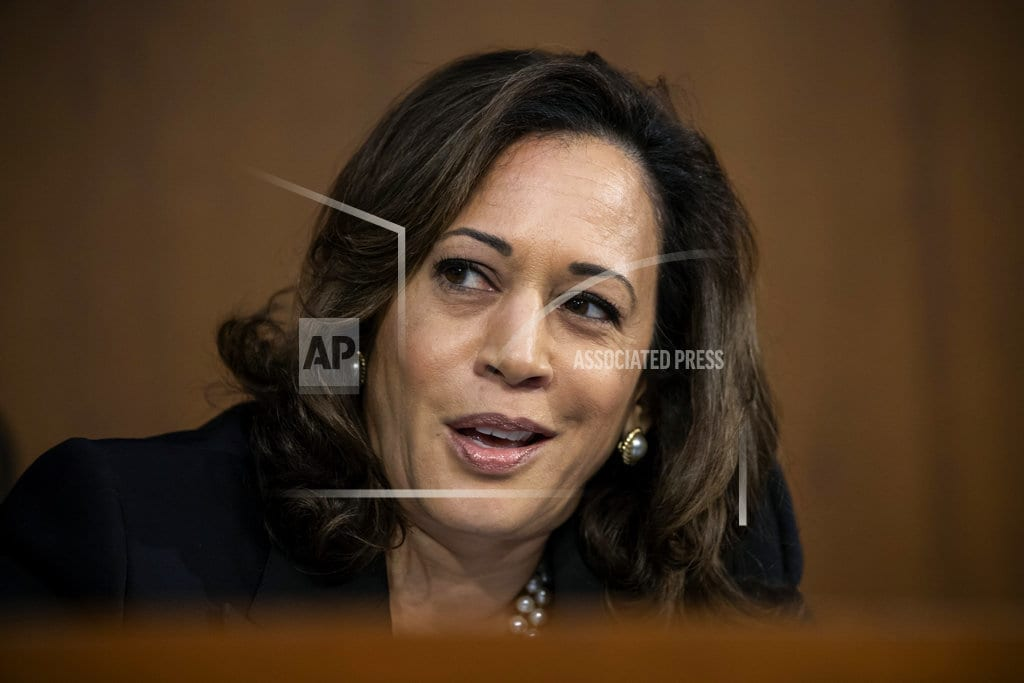 HOPKINS, S.C | Kamala Harris: Midterms a fight for 'the best of who we are'