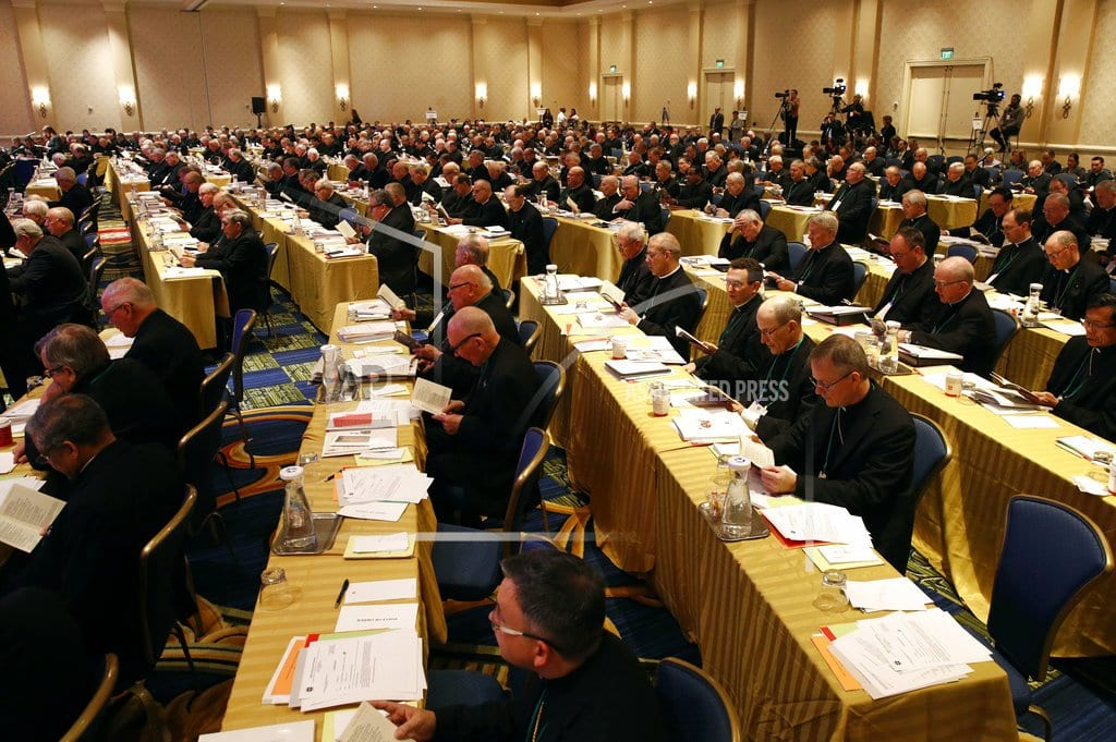 BALTIMORE | Bishops weigh anti-abuse strategy after delay set by Vatican