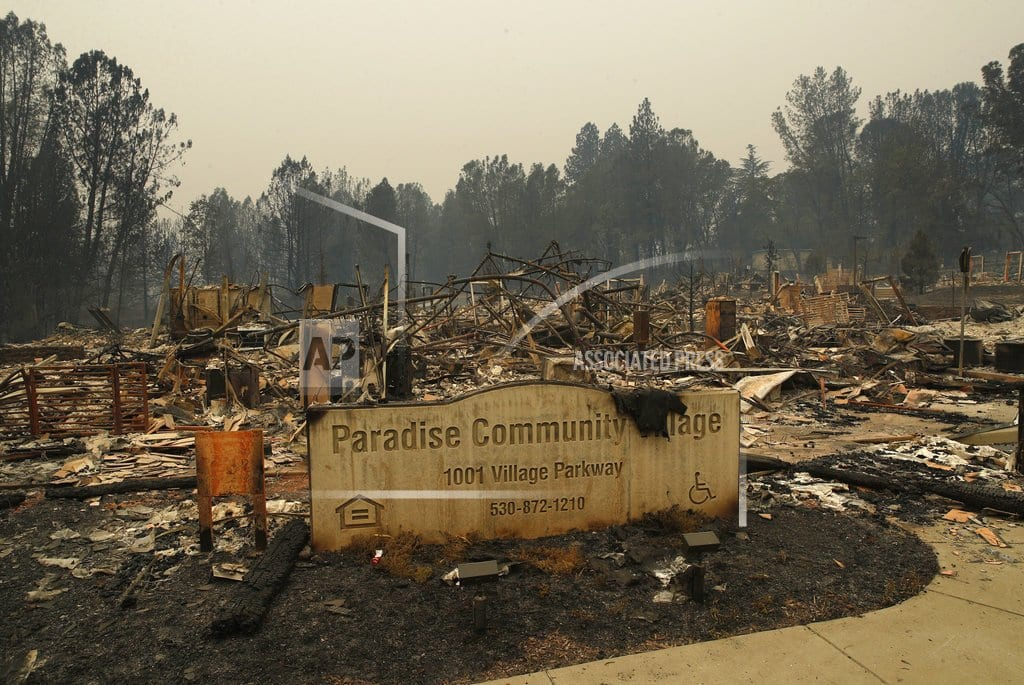 PARADISE, Calif.| Paradise is reduced to ash, but memories survive the flames