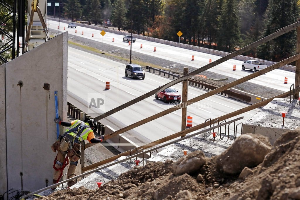 SNOQUALMIE PASS, Wash | Washington state combats collisions with new wildlife bridge