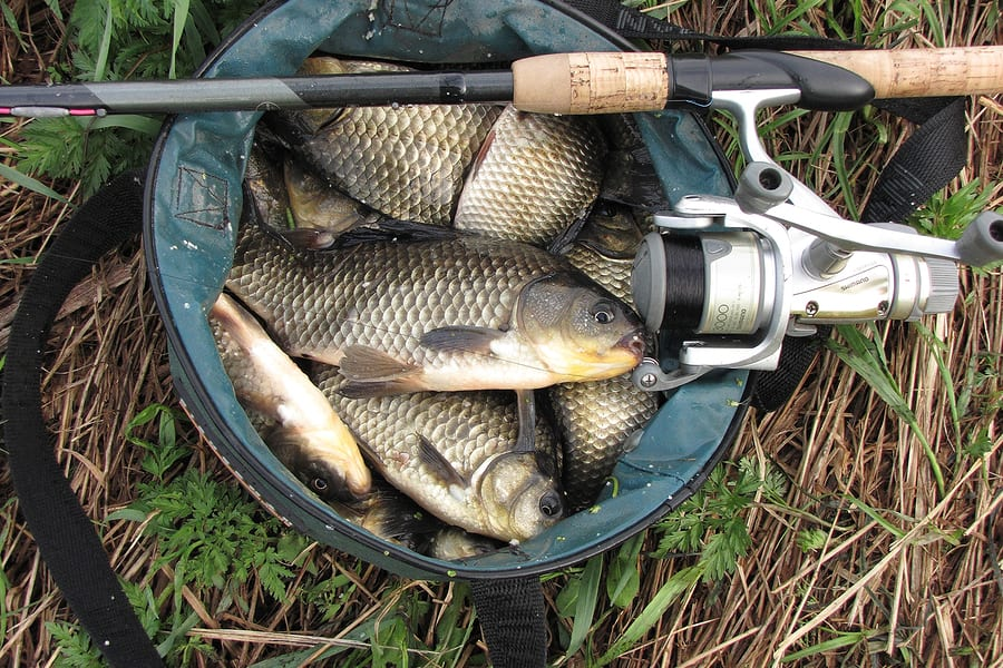 UK News: Fishing without a licence costs Retford man, Kevin Benson, over £600