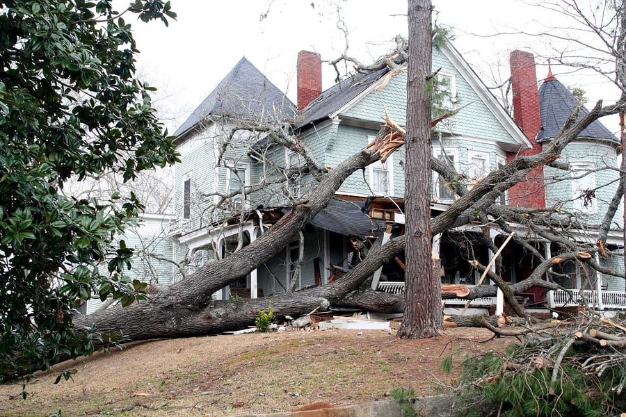 Texas Governor Abbott Issues Disaster Declaration Following Severe Weather Across Texas