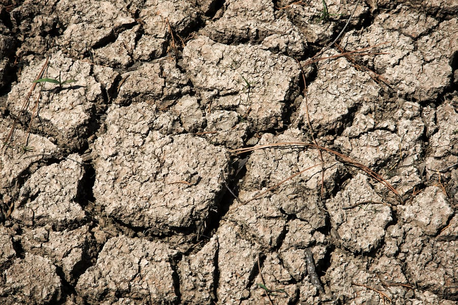 Texas Governor Greg Abbott Declares Drought In 53 Texas Counties