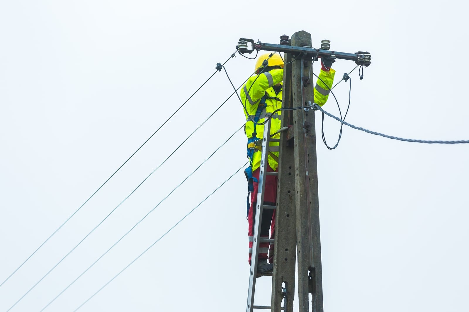 Ameren Illinois Unveils Two-Year Electric Grid Upgrade in Jersey, Macoupin Counties